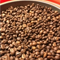Mexico High Grown Altura