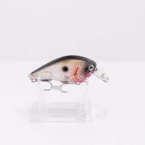 Sillewa Squall 25 - Ghost Tennessee Shad